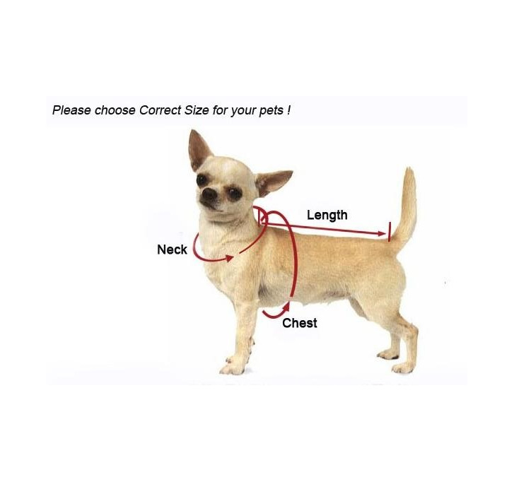 Measure your dog for a comfortable fit