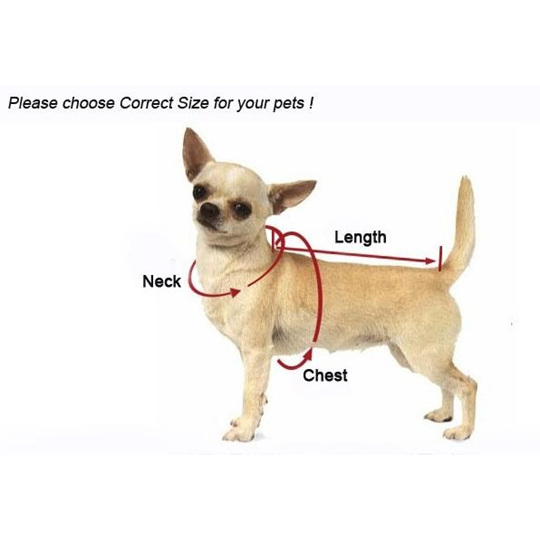 Measure your dog to ensure a comfortable fit