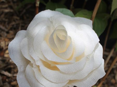 Medium crepe paper roses