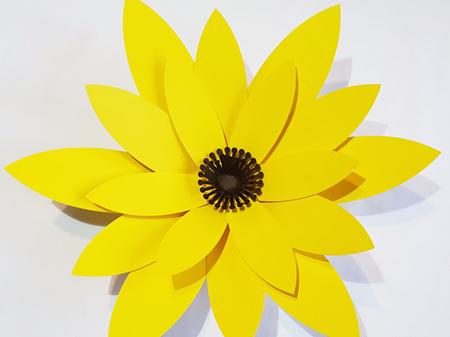 Medium Phoebe Flower