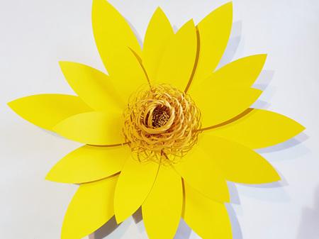 Medium Phoebe flower with spiral centre
