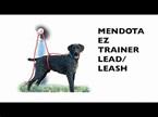 Mendota EZ Trainer Lead/Leash