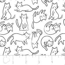 Meow 21170101