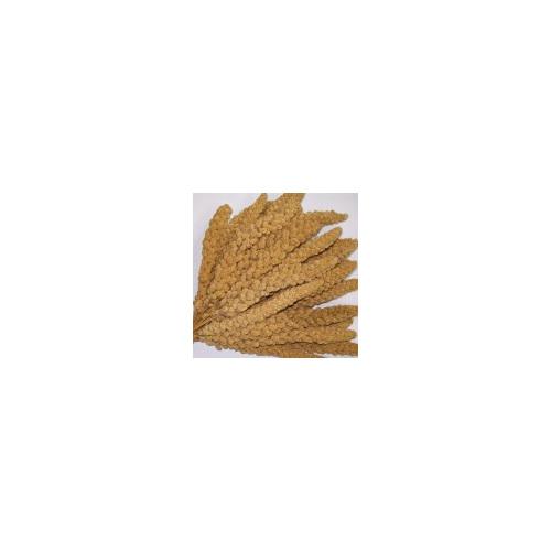 Millet Spray ( 8 piece bag)
