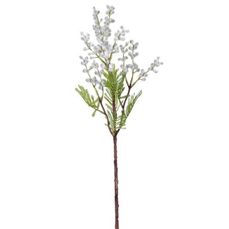 Mimosa Berry White 4550