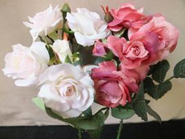 Patio Rose  Rose Pink 1417