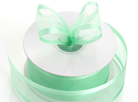 Mint organza with satin edge