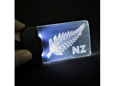 Moana Road Light Up Luggage Tag NZ Fern