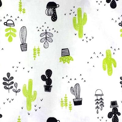 Mod Blocks - Cacti