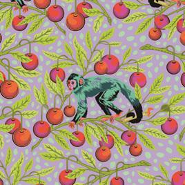 Monkey Wrench PWTP134 Dragon Fruit