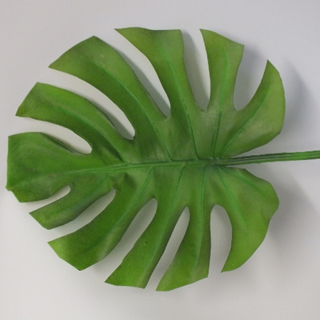 Monstera Leaf large 1819