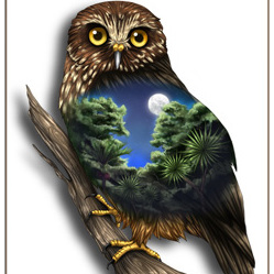 Morepork Birds Eye View - A4 Print
