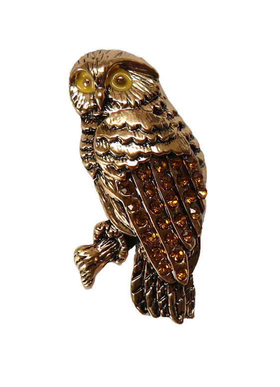 Morepork or Ruru Brooch