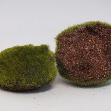 Moss mound 1248