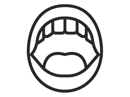 Mouth & Gum