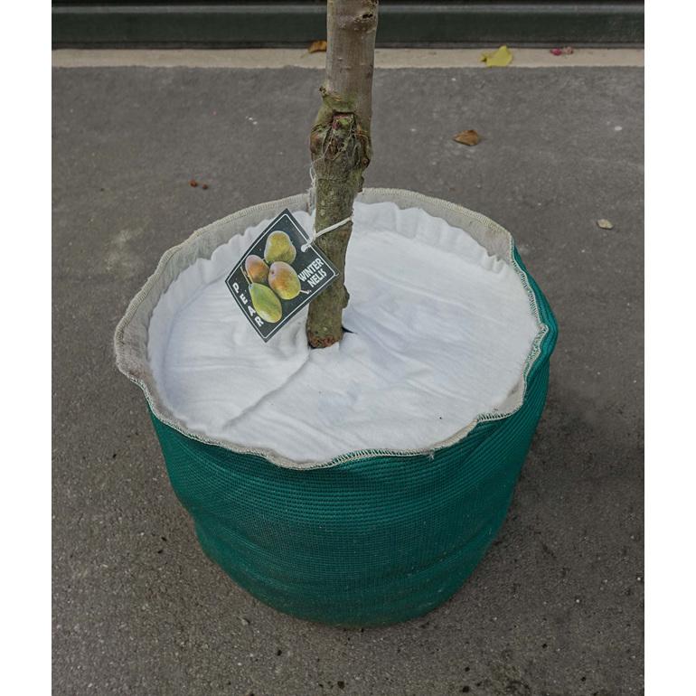 MulchMat placed inside EverGrow Bag