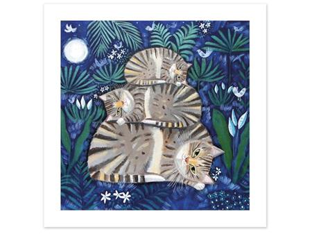 Museums & Galleries Card Moonlight Cat Nap