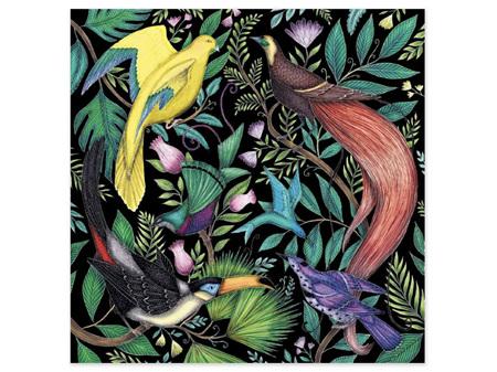 Museums & Galleries Card Tropical Birds