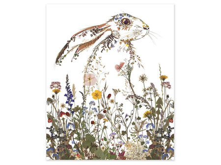 Museums & Galleries Card Wildflower Hare