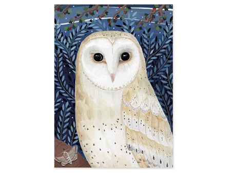 Museums & Galleries Classics Card Barn Owl
