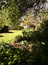 My old garden at Estate Road