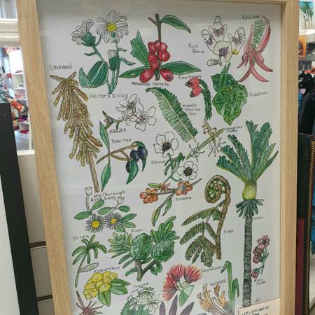 Native NZ Flora A3 Print Framed