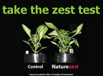 Naturezest 1 Litre- FREE Shipping