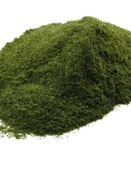 Nettle Powder - 10g