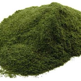 Nettle Powder Approx 10g