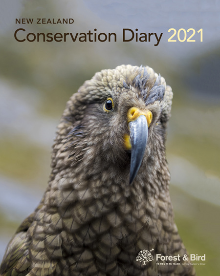 New Zealand Conservation Diary 2021