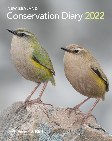 New Zealand Conservation Diary 2022