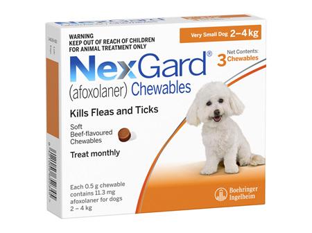 NEXGARD chew for dogs 2-4 kg