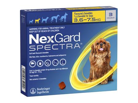 NEXGARD SPECTRA chew for dogs 3.6-7.5 kg