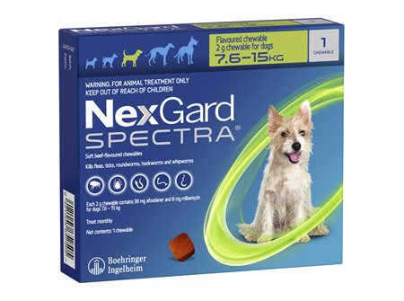 NEXGARD SPECTRA chew for dogs 7.6-15kg