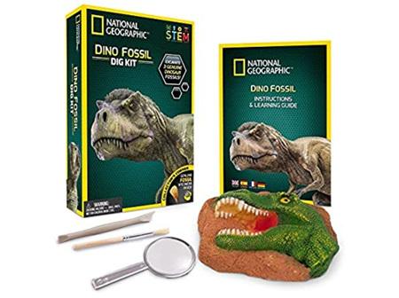 NG Dinosaur Dig