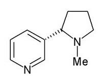 Nicotine Base
