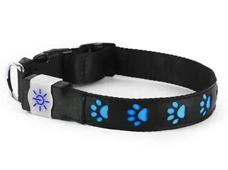 Night Scout Dog Collar Blue Sm