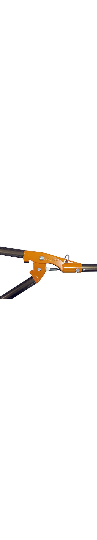 Nishigaki Futomaru telescopic long reach loppers