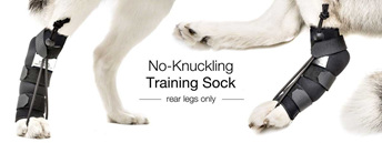 No-Knuckling Training Sock