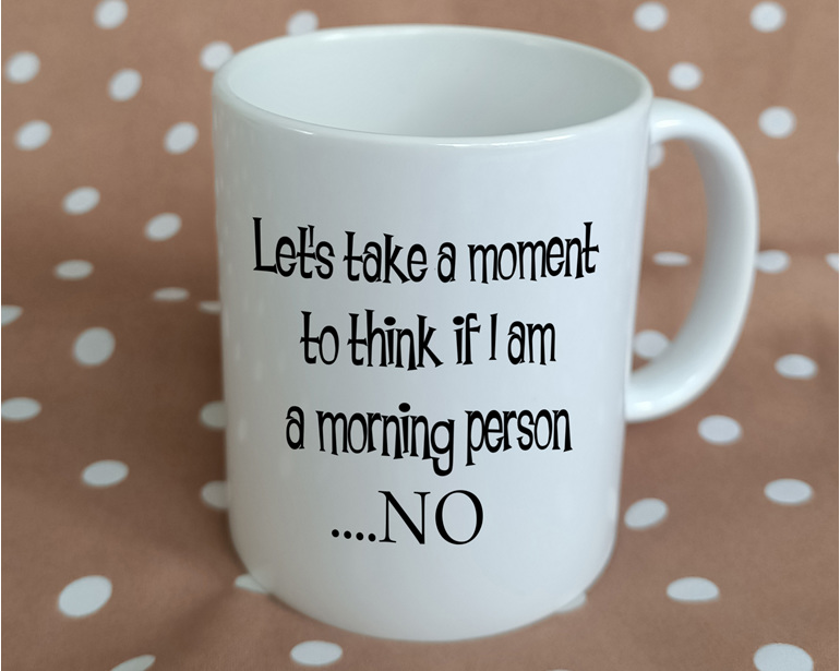 Not morning person funny Mug