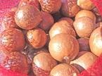 nut-in-shell