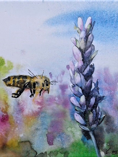 NZ Artist Blank Greeting Card Busy Buzzy