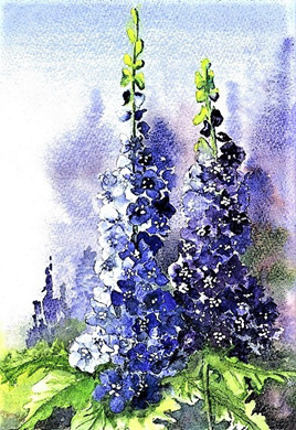 NZ Artist Blank Greeting Card Delphiniums