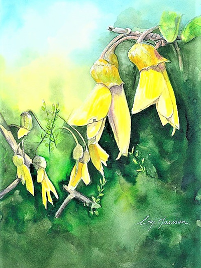 NZ Artist Blank Greeting Card Kowhai