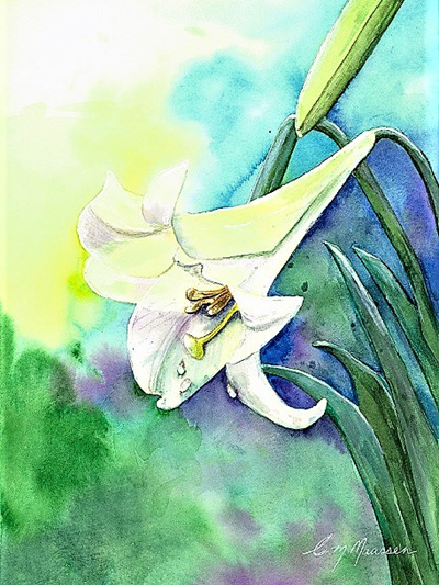 NZ Artist Blank Greeting Card Lily