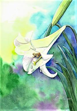 NZ Artist Blank Greeting Card Lily