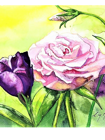 NZ Artist Blank Greeting Card Lisianthus