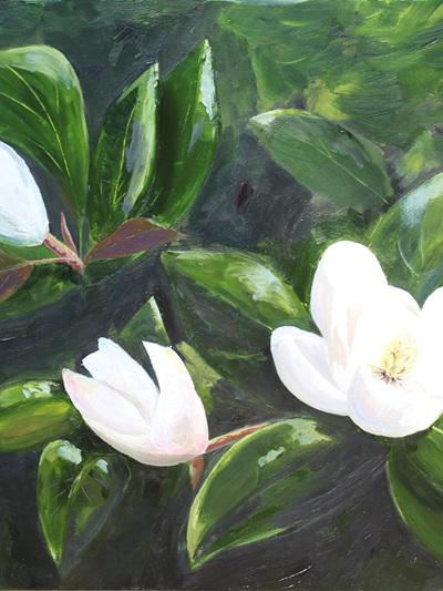 NZ Artist Blank Greeting Card Magnolias