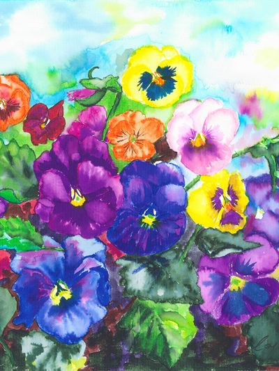 NZ Artist Blank Greeting Card Pansies