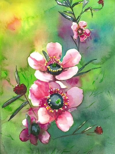 NZ Artist Blank Greeting Card Pink Manuka